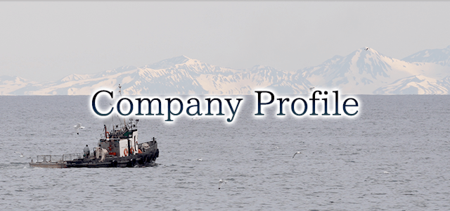 Direct Company Profile